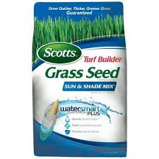 Grass Seed Lawn Care The Home Depot