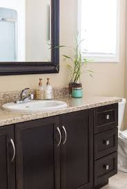 Guest Bathroom Decorating Ideas Pinterest by Best 25 Dark Vanity Bathroom Ideas On Pinterest Dark Cabinets