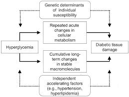 The Pathobiology of Diabetic plications