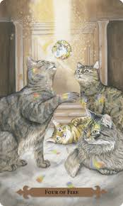 cats on deck mystical cat tarot deck and book by lunaea weatherstone and mickie