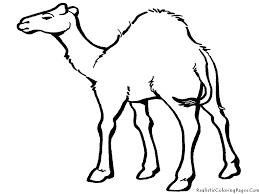 Drawing Of Animal Camel In Desert