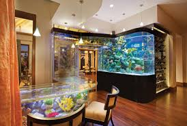 Acqua Liana - Frank Mckinney I Really Want A Jellyfish Aquarium Home Pinterest Awesome Fish Tank Idea Cool Ideas 6741 The Top 10 Hotel Aquariums Photos Huffpost Diy Barconsole Table Mac Marlborough Tank Stand Alex Gives Up Amusing Experiments 18 Best Fish Images On Aquarium Ideas Diy Clear For Life Hexagon Hayneedle Bar Custom Tanks Ponds Designs For Freshwater Modern 364 And Tropical Ov Cylinder 2