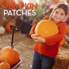Oklahoma Pumpkin Patches by Fall Break Fun In Tulsa Tulsa Kids Web 2014 Tulsa Ok