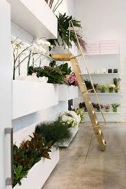 Best 25 Florist Shop Interior Ideas On Pinterest