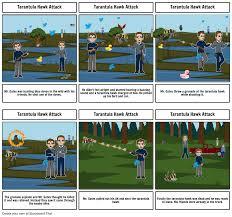 100 Tarantula Trucks Hawk Attack Storyboard By Ramireze4
