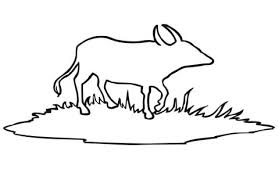 Click To See Printable Version Of Water Buffalo Outline Coloring Page