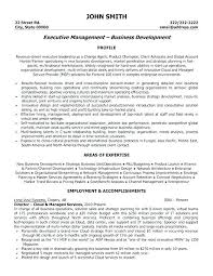 It Director Resume Samples Template Executive Templates Canada Dir
