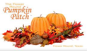 Real Pumpkin Patch Dfw by Flower Mound Pumpkin Patch Of Flower Mound Texas Tx Flower Mound
