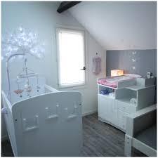 chambre bébé fille et gris décoration chambre bébé fille et gris inspirations avec