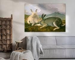 kaninchen bilder auf leinwand poster bestellen ohmyprints