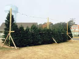 Crab Pot Christmas Trees by It U0027s Beginning To Look A Lot Like Christmas U2026 Sanderling Resort
