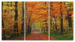 Nature Canvas Wall Art Orange Green Beautiful Prints Framed 3 Panel Forest Pathway Tree Painting Decor Contemporary