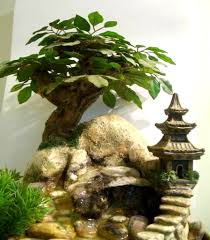 Plants In Bathroom Good For Feng Shui by Feng Shui Essentials Life Is Like We Arrange It Fengshui Feng