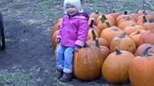 Pumpkin Farms In Channahon Illinois by Dollinger U0027s Pumpkin Farm 2008 Youtube