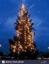Outside Christmas Tree Germany Europe Friedrichs Place Kassel Lights Star Grid Filter