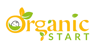 45% Off Organicstart.com Coupons & Promo Codes, October 2019 Susan Fitch Design Give Away Last New Setfor A While Redbubble Coupon Code Christmas 2019 Red Robin Promo July Code Myriam K Paris Etsy My90acres 30 Off Onohostingcom Coupons Promo Codes October Amazoncom Customer Thank You Note Shop Product Tags Personalized First Day Of School Sign Back To Daycare Prek Kindergarten Grade Coloring Blackwhite Page Mailed Olive Kids Texas De Brazil Vip What Is The Honey Extension And How Do I Get It 45 Ethiopianairlinescom 7 Secrets For Getting Fivestar Reviews On By Elissa Carden