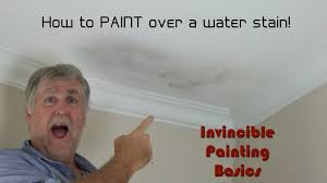 Zinsser Popcorn Ceiling Patch Video by How To Paint Over Water Damage One Step Process And It U0027s Easy As
