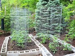 Veggie Garden Ideas Organic Pallet