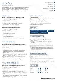 Resume Example For Jobs
