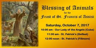 blessing of animals for the feast of francis of assisi 7