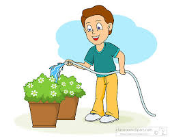 Gardening Clipart water to plants Classroom Clipart