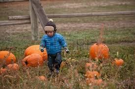 Pumpkin Patch Denver by Child At The Pumpkin Harvest Festival Denver Colorado October
