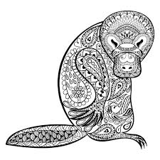Duck Billed Platypus Coloring Page