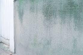 anti mousse murs exterieurs sur murs extérieurs dip etanch