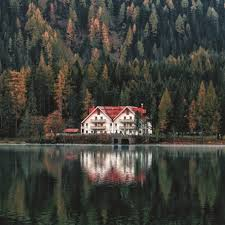 100 House In Forest White And Orange Beside And Body Of Water