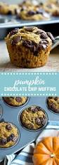 Post Road Pumpkin Ale Nutritional Info by Pumpkin Chocolate Chip Lactation Muffins Love U0026 Zest