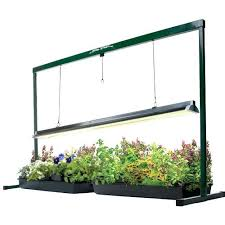 Grow Lights For Indoor Plants Lowes Lighting Set Up Best House