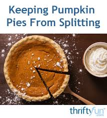 Storing Pumpkin Pie by 31 Best Thanksgiving Ideas Images On Pinterest Thanksgiving