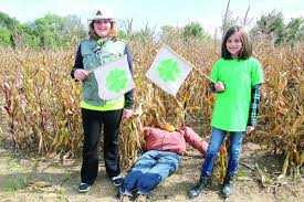 Lehner Pumpkin Farm by Lost In The Maize 4 H Corn Maze And Pumpkin Patch Middle