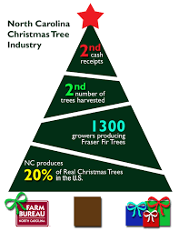 Christmas Tree Farms In Boone Nc by Industry Spotlight Nc Christmas Trees U2013 First Furrow