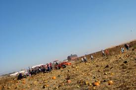 Pumpkin Patch Rides by Ben And Alonna Blog Archive Linder Farms Kite Photography