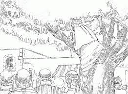 Zacchaeus Coloring Page 17 Pictures