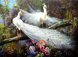 View Original Size Beautiful Birds And Peacock Bird Nice Painting Poster Pics HD