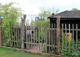 141 Best DIY Gardens Yards