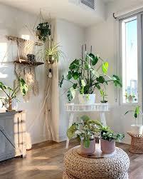 plant display plant stand plant hangers hanging plants big