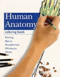The Anatomy Coloring Book 3rd Edition 4th By Wynn Kapit