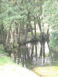 la directive cadre sur l eau pdf