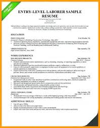 Resume Summary For College Student Luxury Examples Entry Level Lovely