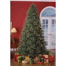 Sylvania 9 Pre Lit Frasier Fir Tree Soft White Inspiration Of Douglas Christmas
