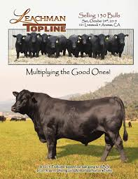 2015 Top Line Sale By Leachman - Issuu 1021cattle6ajpg Purple Reign Cattle Company Online Sale The Pulse February 2017 Texas Longhorn Trails Magazine By A Good Place To Be Cow At Fort Worth Stock Show Animals Are Commercial And Registered Ozarks Farm Neighbor Newspaper Cattlemen Opmistic About Resumed Beef Exports To China News Blog Lautner Farms Experience The Value Best Of Southwest Shootout Overall Market Burke Hidin In Sand Steer November 2015 Graham Livestock Auction Sanctioned Shows Ijbba Iowa Junior Beef Breeds Association