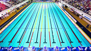 Gallons In Olympic Swimming Pool Athletes Swim During