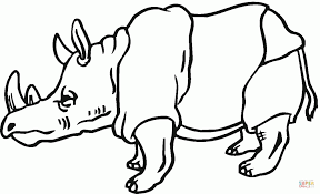 Rhinoceros 11 For Coloring Page