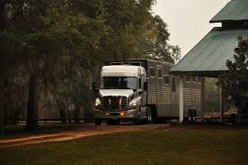 Equine Express | America's Most Trusted Nationwide Horse Transportation