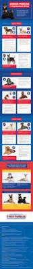 Do Pocket Puggles Shed by Best 25 Pug Health Problems Ideas On Pinterest Dog Dog Care
