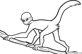 Monkey Printable Coloring Pages With Free For Kids Print Download