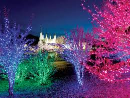 Types Of Christmas Tree Lights by 4 Places To See D C U0027s Best Christmas Lights The Washington Post